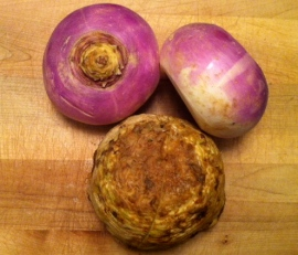 Purple Top Turnip and Celery Root